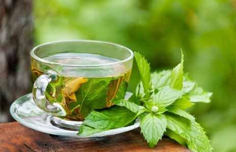 Dieta del té verde adelgazar